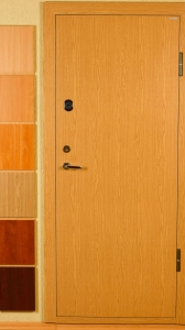 security-doors-eco-5